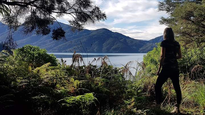 De Marlborough Sounds in Nieuw-Zeeland